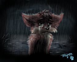 Crash Bandicoot :Rain and sorrow by Tatujapa