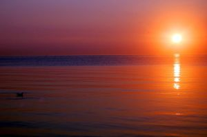 Ripples At Sunrise by ChappyApple