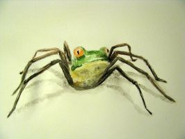 Spider-frog by Indene
