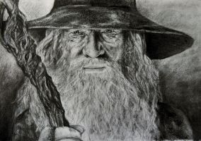 the most wonderful of wizards (drawing) by masterpandastudios