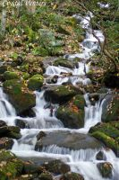 Smoky Mountains Waterfall by poetcrystaldawn