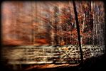 All the blur has brought you to where you are by Pammiesphotography
