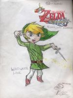 Windwaker Link by MisterK1