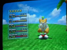another pic of tails chao by medicman4444