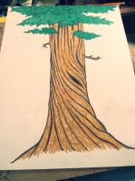 Redwood tree by rackill