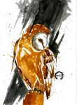Owl by MauriceZombie