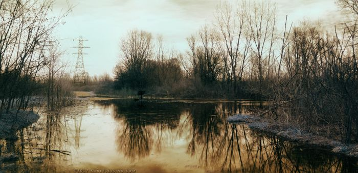 Flooded Trail by KBeezie