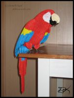 3D Origami Scarlet Macaw by Delinlea