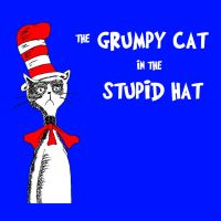 The Grumpy Cat in the Stupid Hat by Angelhair26
