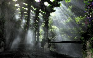 The Shaded Path by dblasphemy