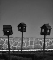 Houses on a stick by Boias