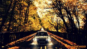 FXO Through Autumn Burning Road :3 by VinJiro