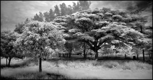 Thai Schoolyard Infrared... by MichiLauke