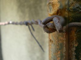 Rusty wire by Sadelikfish