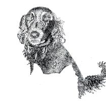 Pointilism Jackal Puppy by Rose--Wolf