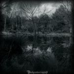 La mare aux fees by CountessBloody