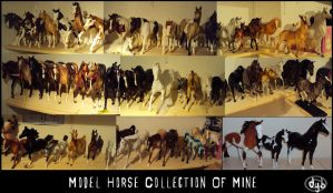 The Model Horse Collection by dyb