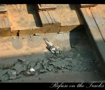 Refuse on the Tracks by mimeryme