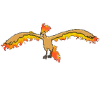 Moltres XY by Javierx500