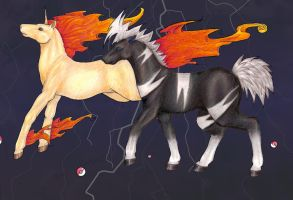 rapidash and shimama by Stalaxy