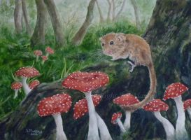 The Dormouse. by SueMArt
