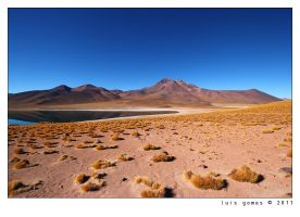 Altiplano lake by gomes