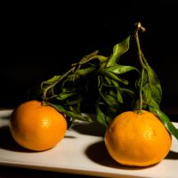 Two mandarins 01 by IgorBekker