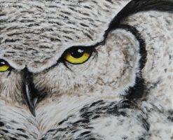 Pale Great Horned Owl by Samishii-Kami
