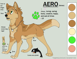 New Aero!! by iKodi