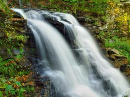 Ricketts Glen State Park 61 by Dracoart-Stock