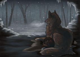 APH: A Cold Winter's Evening by Snowfirewolf