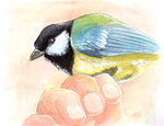 Great tit painting by Nara-chann