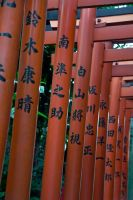 Lots of Torii by SuperPope