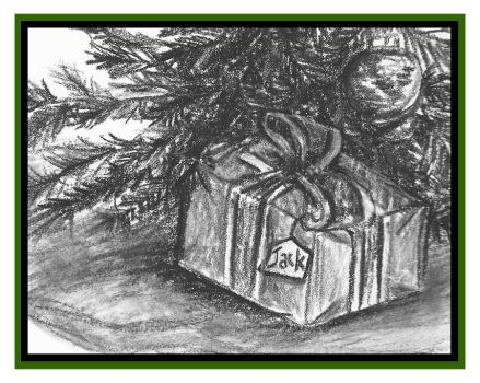 The Unopened Box 12/14/12 by FreeMeadows