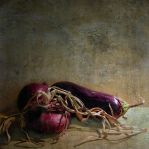 Still life in violet by kopalov