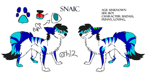 NEW ALTER Snaic 2013 refencesheet by Unikonkukka