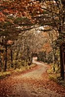 Autumn road by K-L-R