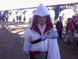 Assassin from Assassin's Creed by Chaser1992