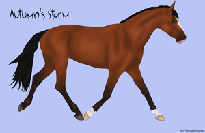 #20 TA Autumn's Storm by Happy-Horse-Stable