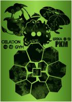 Celadon Gym by Elhombremagma