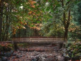 Across the Creek by midnightstouchSTOCK