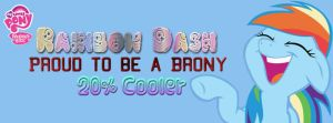 Rainbow Dash Facebook Cover by AceofPonies