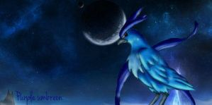 Articuno at night banner by purpl3umbreon