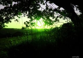 A Little Tinge Of Green by Estruda