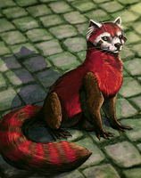 Pabu the Fire Ferret by Calypte