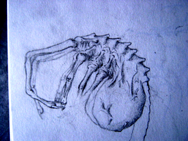 a facehugger sketch by bladderpains