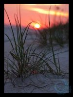 Oak Island Sunset by crocodiledreams