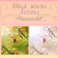 Black Winter Actions - Fantastical by blackxwinter