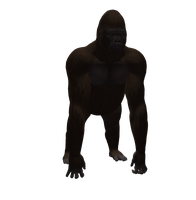Gorilla Male Png Stock by Direwrath