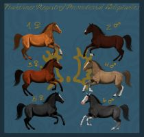 Promotional Trakehner Registry Auction by MyHorseTwist